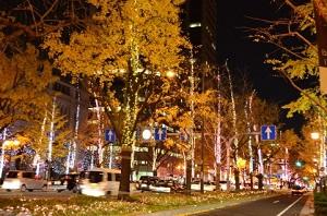 クリスマスイルミネーションin関東!人気スポットはココ!