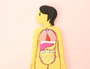 うつが腸内フローラ改善で奇跡の回復!たけしの家庭の医学