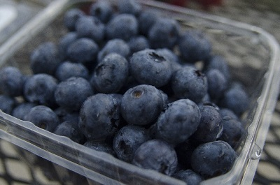 ブルーベリーの栄養